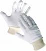 Rukavice TIT režná bavlna pružná manžeta